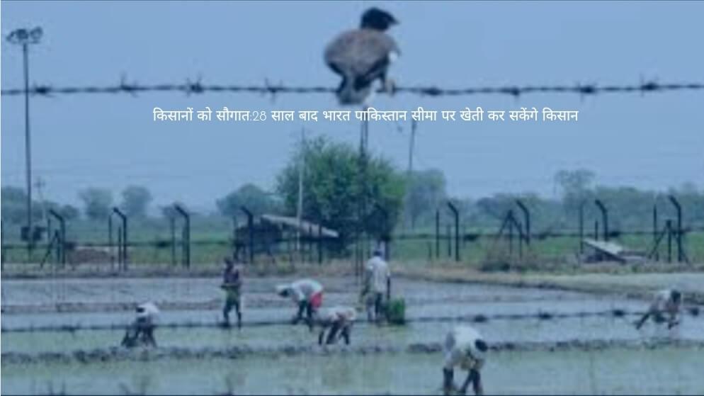 किसानों को सौगात:28 साल बाद भारत पाकिस्तान सीमा पर खेती कर सकेंगे किसान