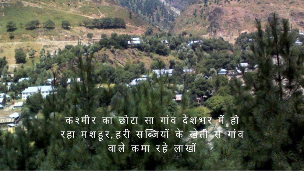 कश्मीर का छोटा सा गांव देशभर में हो रहा मशहूर,हरी सब्जियों के खेती से गांव वाले कमा रहे लाखों