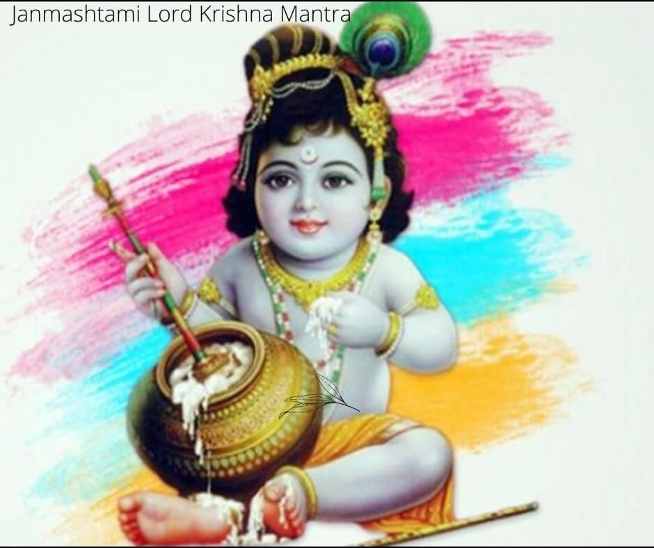Janmashtami Lord Krishna Mantra: भगवान श्री कृष्ण के ये मंत्र कर देंगे आपकी बेड़ा पार, मिलेगा खास कृपा